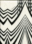 Roberto Cavalli Home No.5 Wallpaper RC16008 By Emiliana For Colemans